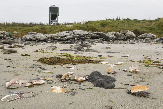 Shells on the beach and tower
