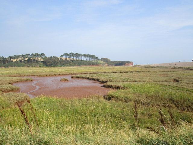 The Otter Estuary