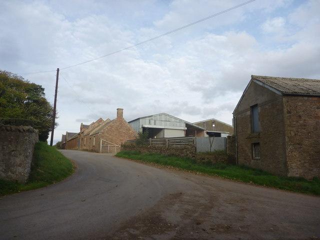 Rural East Lothian : Longyester