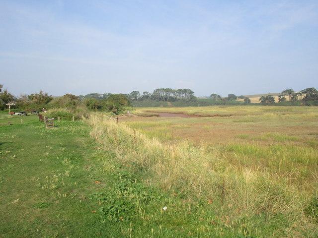 The Otter Estuary and salt marsh