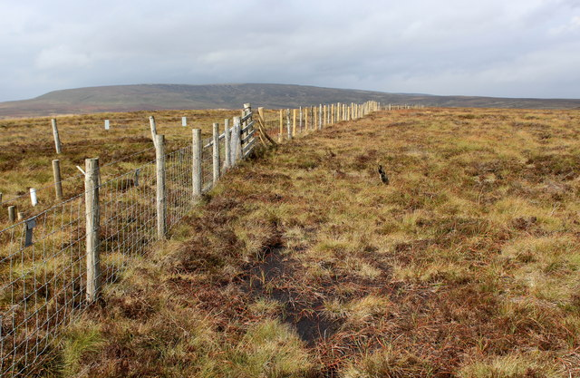 Boundary Fence West of Meugher