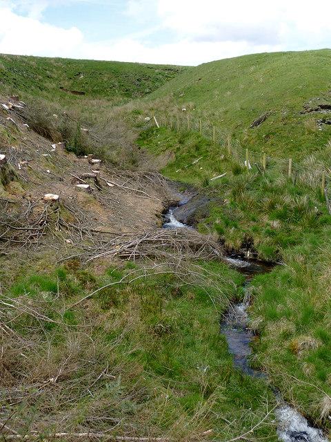 Nant-y-Fedw south of Drygarn-Fach, Powys