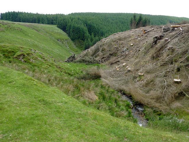 Cwm Nant-y-Fedw south of Drygarn-Fach, Powys