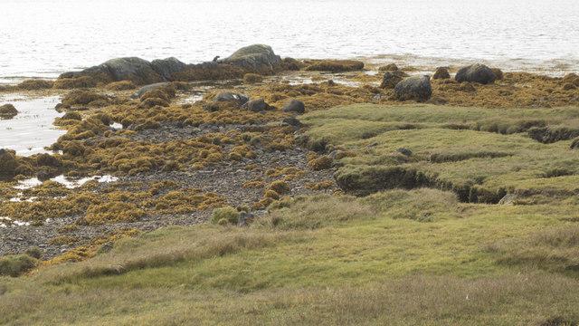 Shoreline at Malacleit