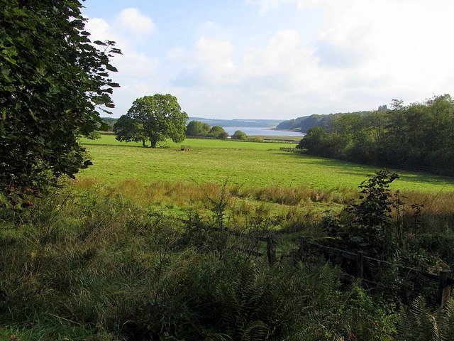 Pasture at west end of Derwent Reservoir