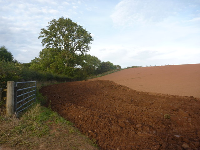 Rural East Lothian : Just Ploughed Near Newlands