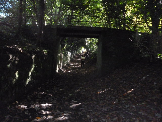 Tandridge:  Footbridge over Greensand Way
