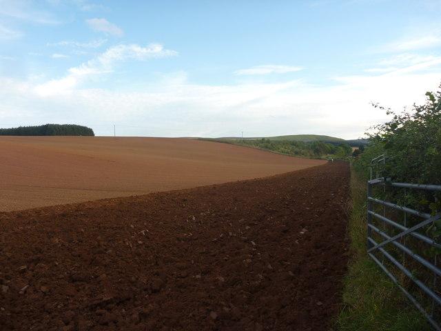 Rural East Lothian : Ploughing Near Newlands