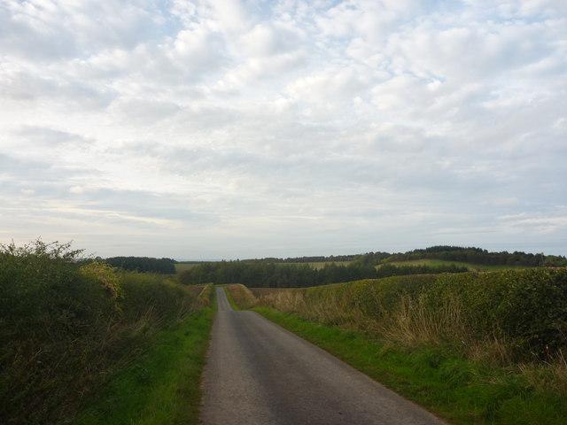 Rural East Lothian : A Minor Road North Of Danskine