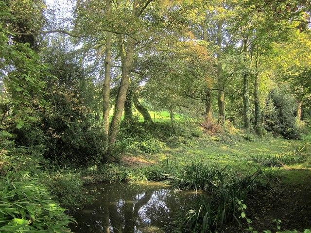 Pond, Little Sodbury