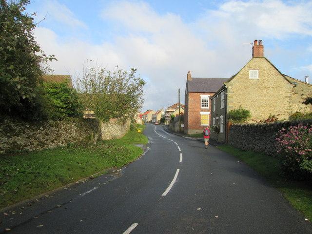 Sawdon  village  street