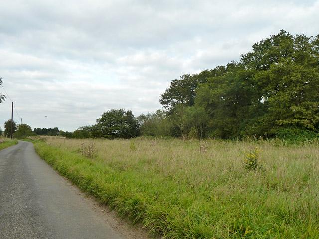 Grassland by New House Lane