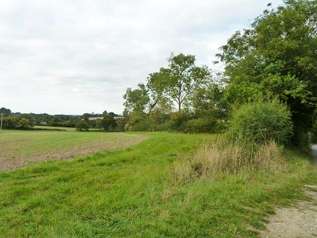 Field edge near Water End