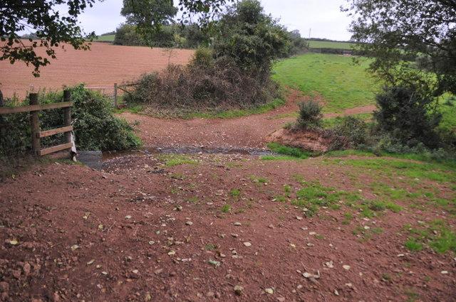 Mid Devon : Small Stream
