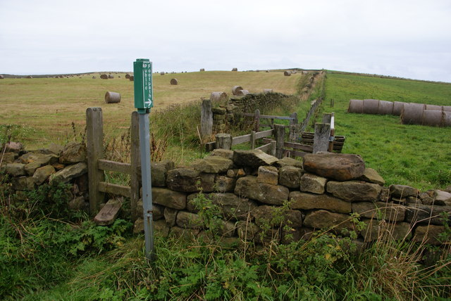 Footpath to Boulby Cliff