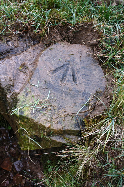 Benchmark on stone over stream crossing track