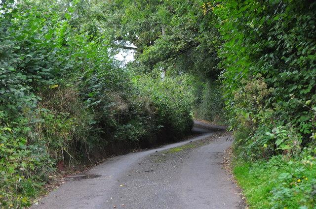 Mid Devon : Coombe Lane