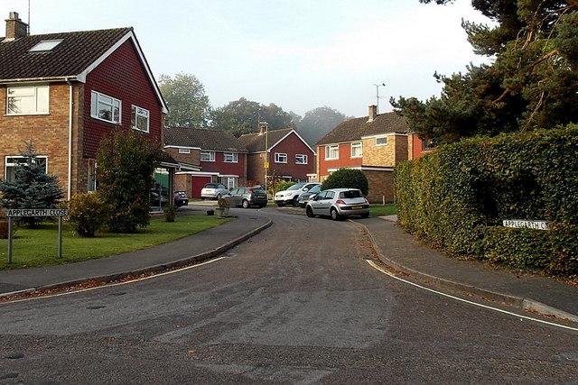 Applegarth Close, Basingstoke