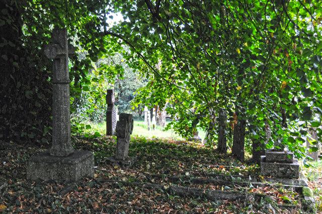 Cadbury : St Michael & All Angels Churchyard