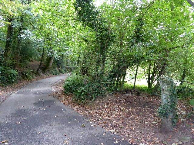 Ham Lane path and cyclepath