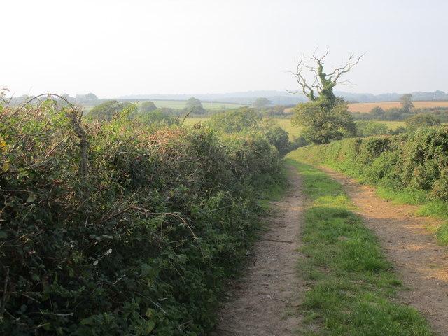 Track off Castle Lane