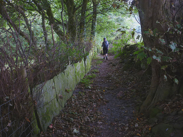 Stone slabs line the path at Hartley Ground