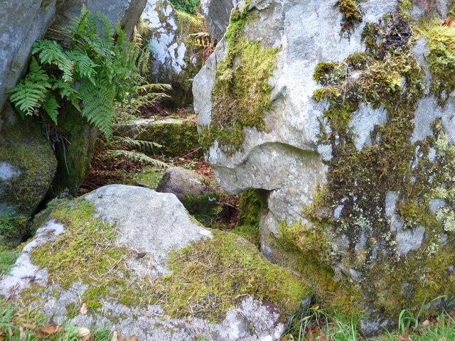 Chambered cairn, Crarae Gardens