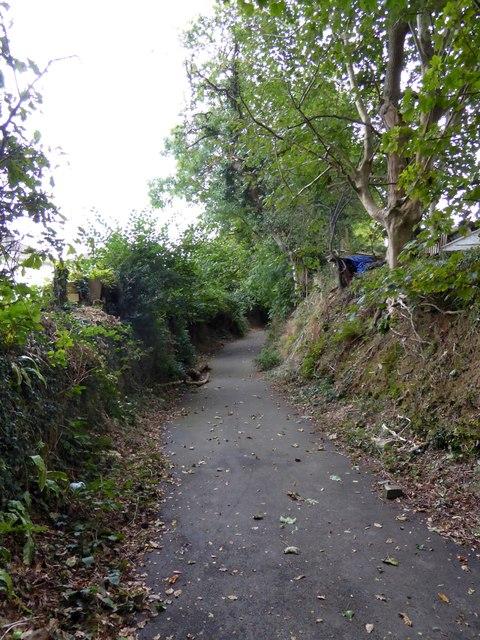Ham Lane, an old sunken lane