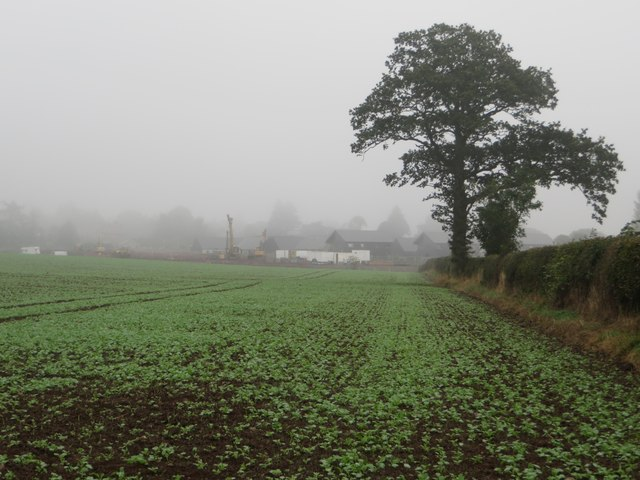 Arable field on the edge of Duns