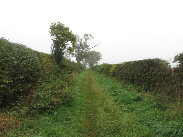Track to Duns