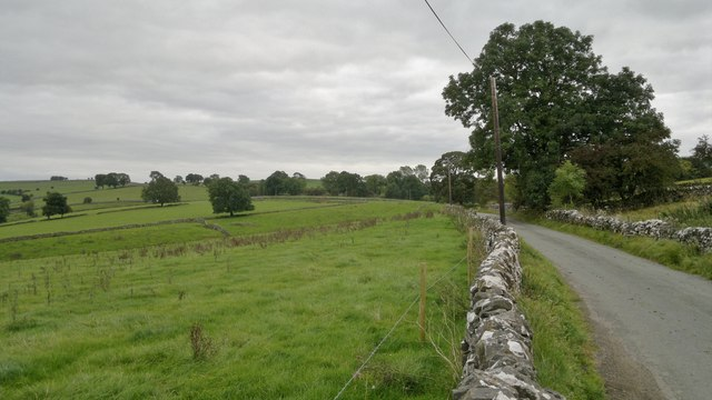Grassland near Wetton