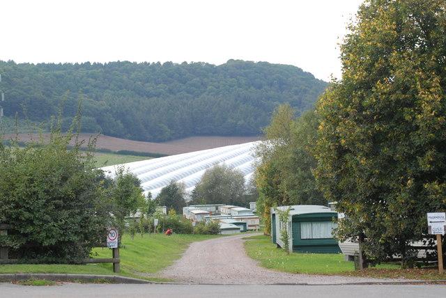 Polytunnels and caravans at Coughton