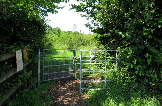 Kissing gate in Piddington Wood