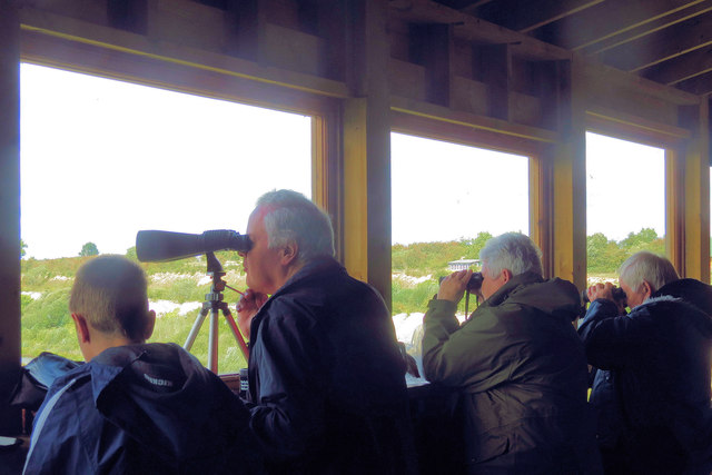 Bird Watching from the Visitor Centre Hide, College Lake