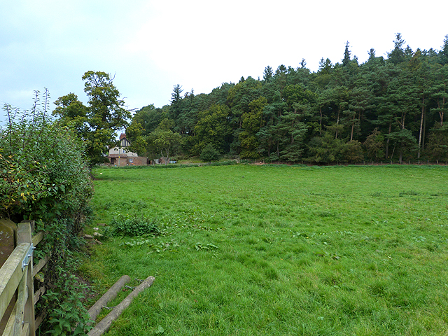 Lodge Wood and field