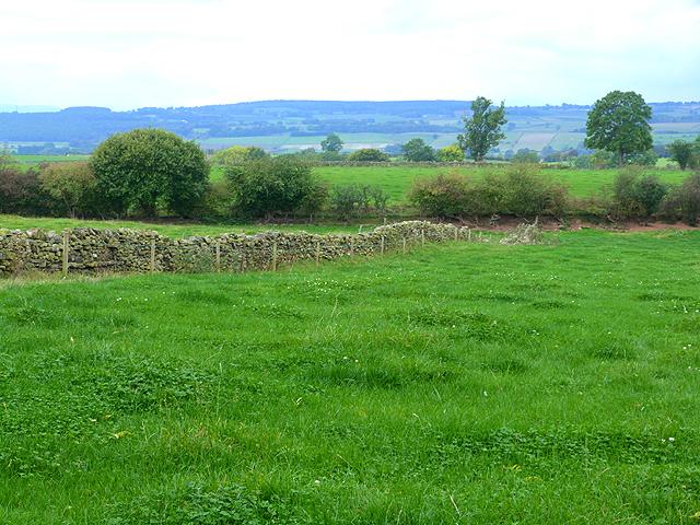 Fields near Hunsonby