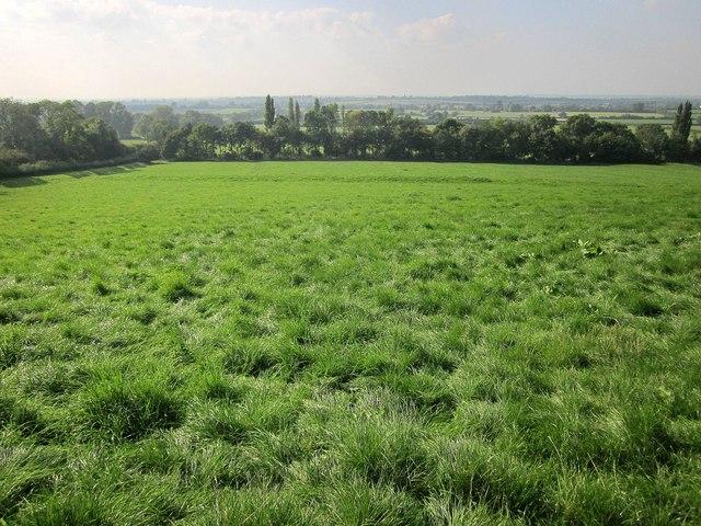 Field near Little Sodbury
