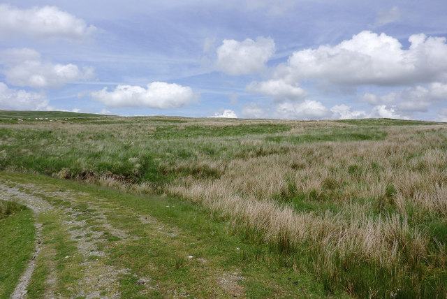 Elenydd moorland towards Llethr Garw, Powys
