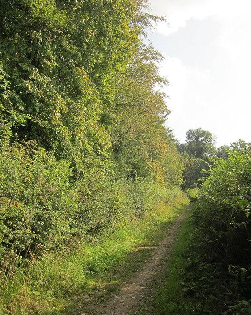 Footpath below Little Sodbury Wood