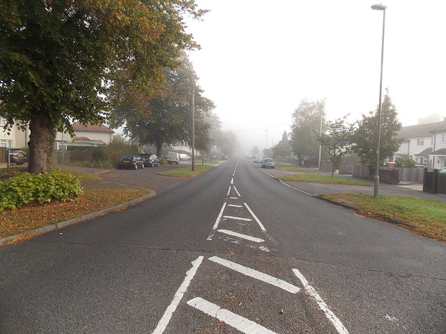 Into the mist along Grove Road, Basingstoke