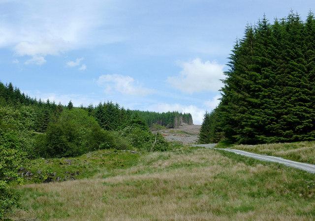 Cwm Nant-y-Fedw, Powys