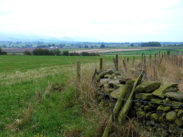 Field near Hunsonby