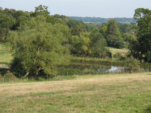Pond near Parsonage Farm, Boxted