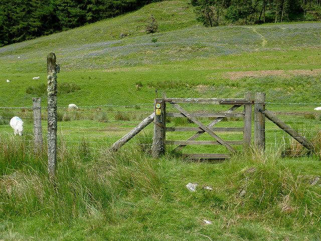 Bridleway in Cwm Irfon, Powys