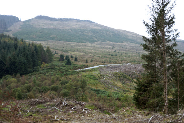 Forestry track below Benailsa