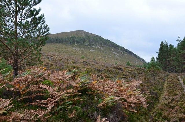 Hill track below Creag Ghiuthsachan