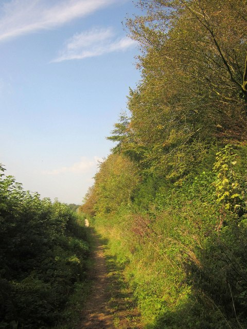 Footpath below Little Sodbury Wood