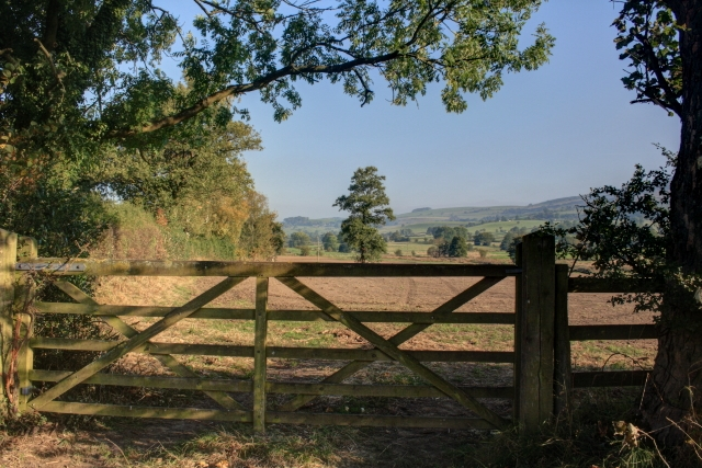 Gate into Field Near Stockmeadows