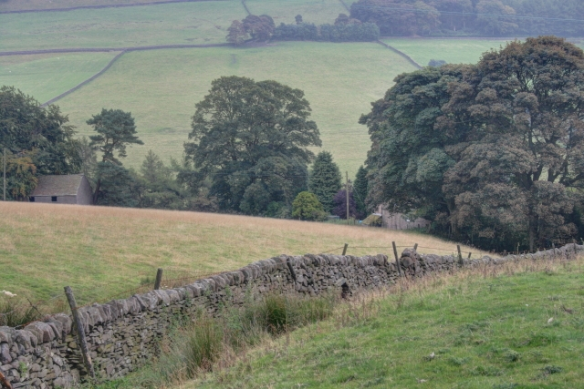 Dry Stone Wall Above Banktop