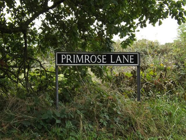 Primrose Lane sign